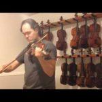 anniversary-waltz-gypsy-violin