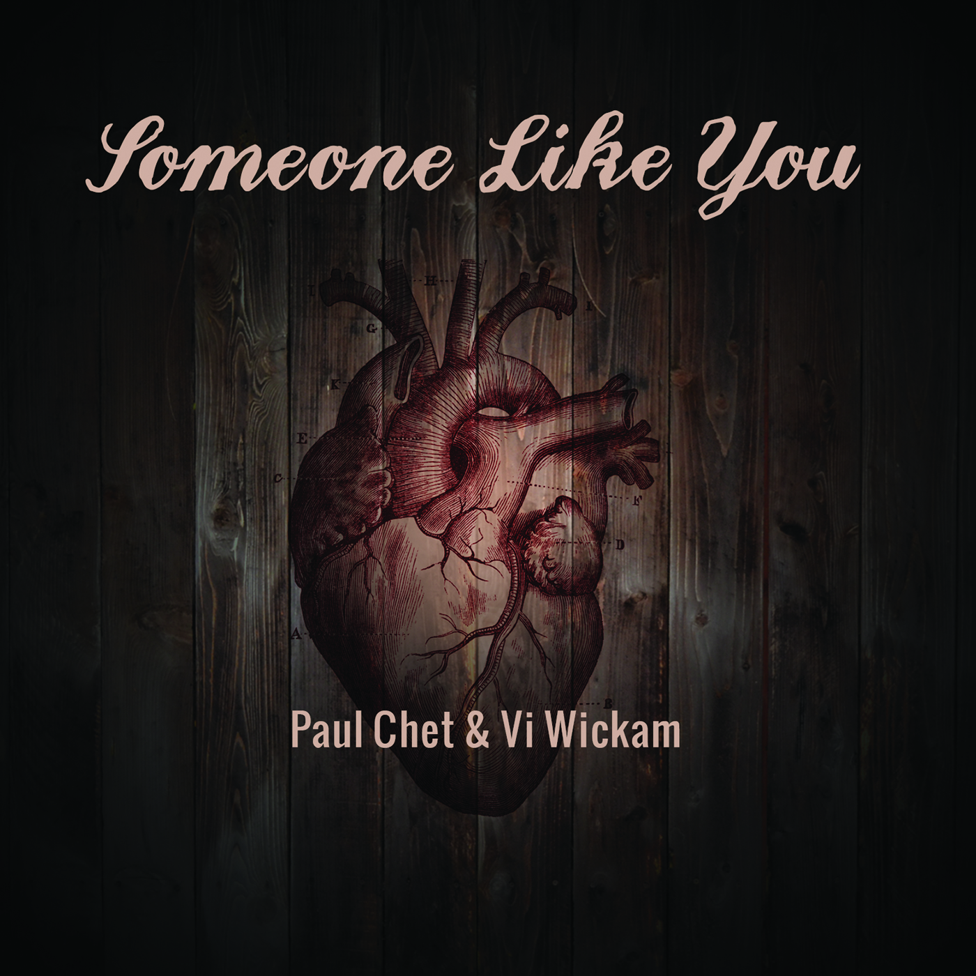 Someone Like You - Country Cover