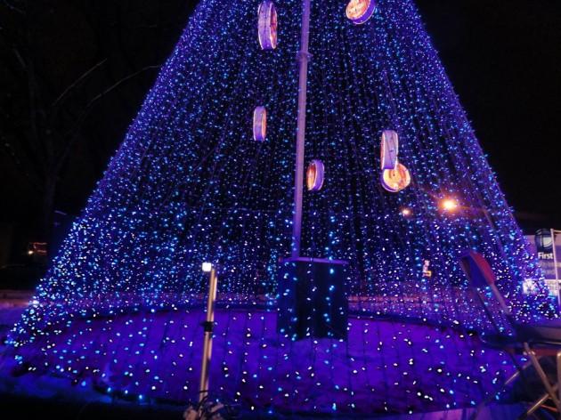 Tree Lighting Ceremony Fort Collins