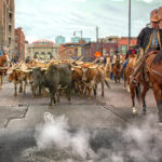 national-western-stock-show-parade