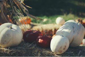 Inside Health Harvest Festival